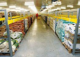 Власти Петербурга разрешили в Горелово построить склад под сельхозпродукцию