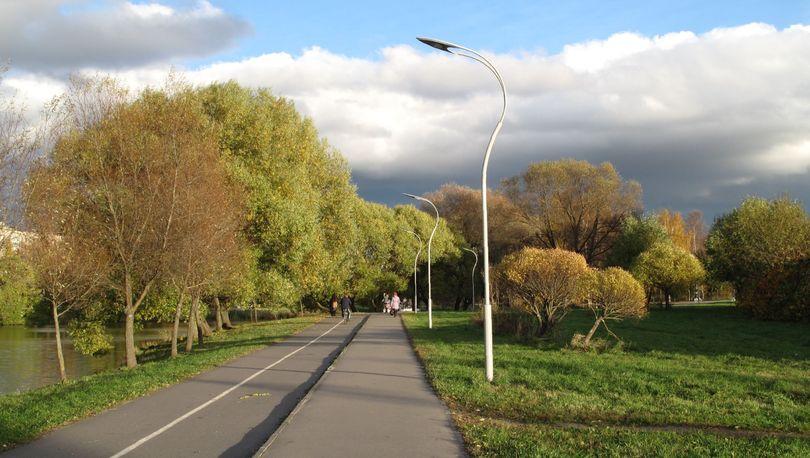 Работы в Муринском парке ограничат движение