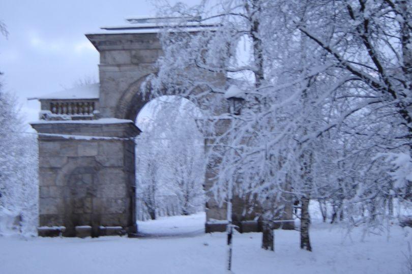 Березовые ворота