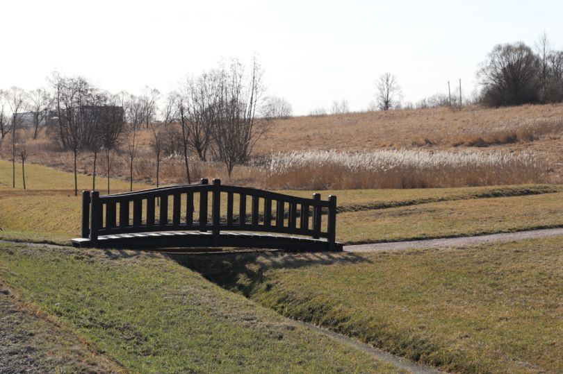 парк Дальняя Рогатка