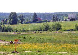 Дорогу к поселку Клеверное построят за 48 млн рублей