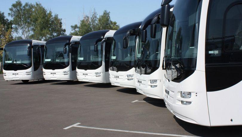 В Петербург приедут автобусы из Владимира