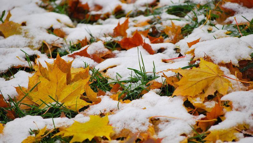 В Ленобласти ожидается снег