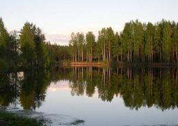 Арбитраж вернул землю под Кировском муниципалам