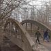 Объявлен аукцион на реконструкцию Дачной улицы в Калининграде