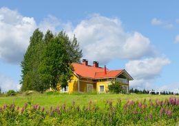 Строительство домов на сельхозземлях могут узаконить