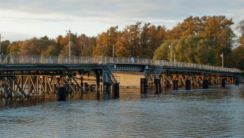 елагин мост