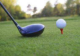 Под Всеволожском постоят гольф – клуб и жилье