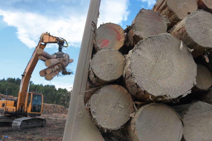 лесопромышленный комплекс