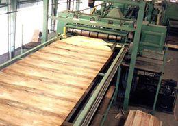 Китайский бизнес вложится в производство шпона