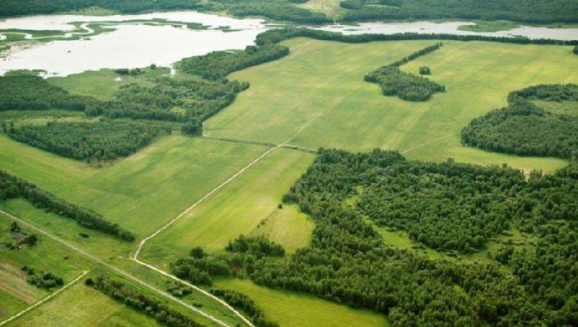 Ленинградский гектар