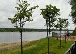 Невский парк
