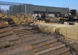 В Ленобласти растут объемы лесопромышленного производства