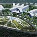 «Согаз Медицина» к 2021 году построит в Юкках крупный частный медкомплекс