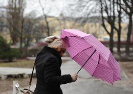 В Петербурге усилится ветер