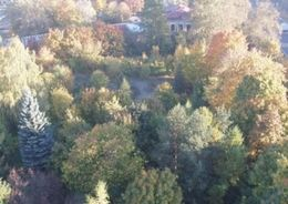 Большая часть  сквера Агрофизического института будет сохранена