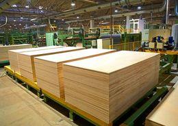 «Лесплитинвест» построит в Приозерске фанерный комбинат