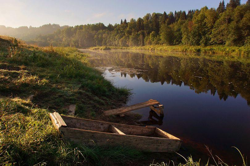 Веппский лес