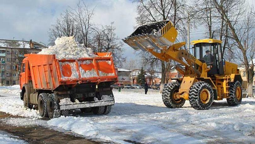 Поддержание чистоты в Пушкине обойдется в 14 млн рублей