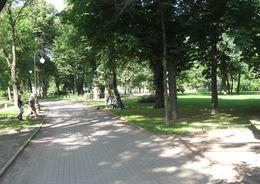 На территории Александровского парка планируется создать креативное пространство