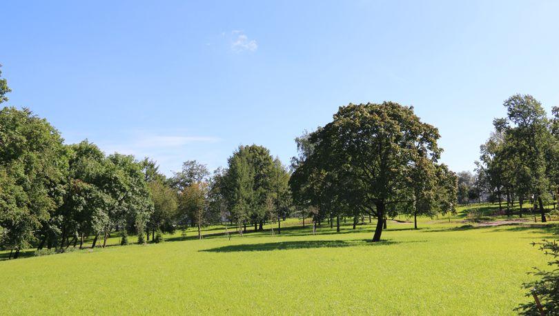 В Невском районе обновлен парк Куракина Дача