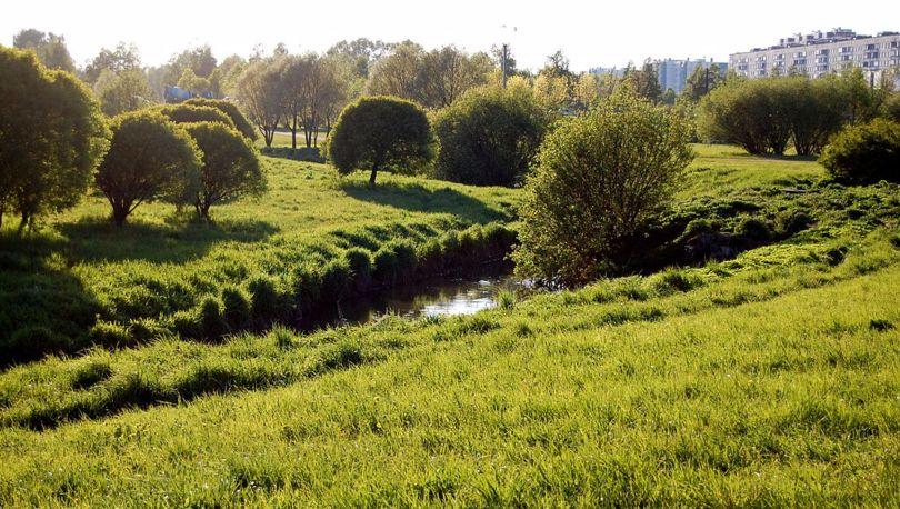 Муринский парк
