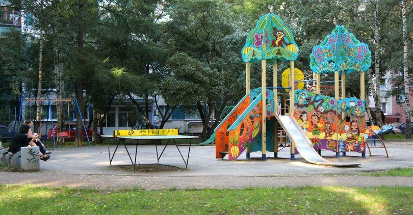 В Петербурге выбрали лучшие благоустроенные районы