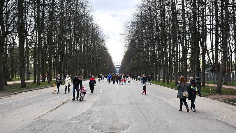 Парк на Крестовском могут уменьшить в размере