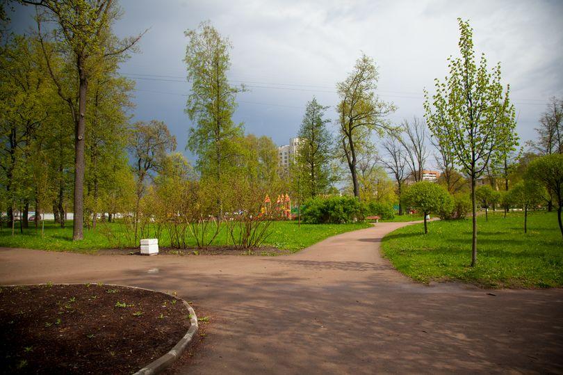 зеленый парк