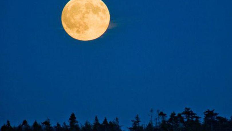 РФ отказались от идеи строительства лунной базы
