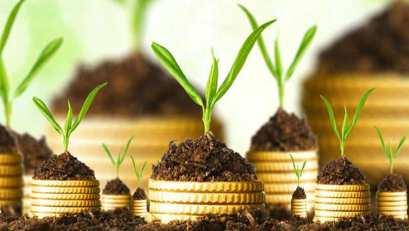 Инвестиции в землю за последние 1,5 года снизились на 72%
