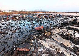 Председатель комитета по природопользованию: Сжигать отходы «Красный бора» нецелесообразно