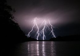 В Ленобласти бушует непогода