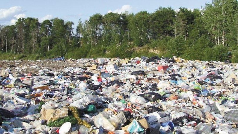 В Приморском и Пушкинском районе выявлены две свалки