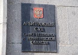 «ЭРА-Инжиниринг» взыскала с СНГС 34 млн рублей