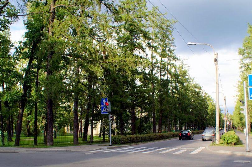 Софийский бульвар
