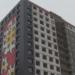 Гигантские ромашки на фасаде дома в Мурино занесли в книгу рекордов России