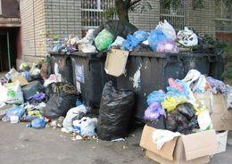 В России могут ввести налог на мусор