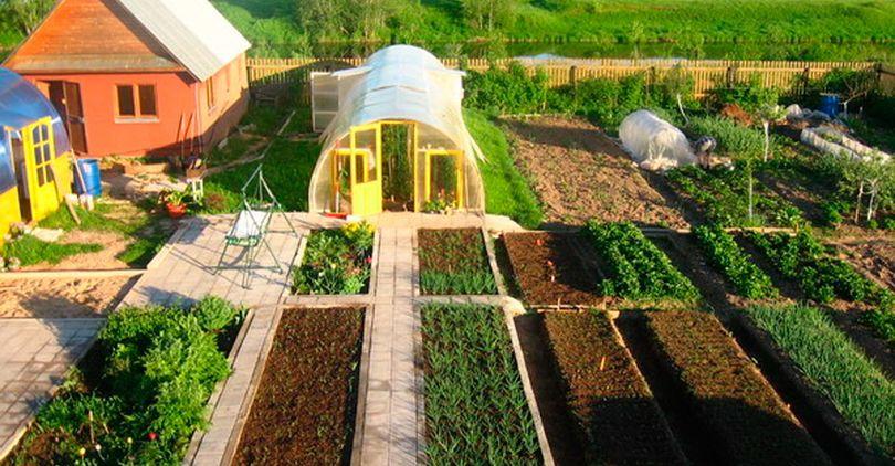 В России могут запретить строить капитальные дома на огородах
