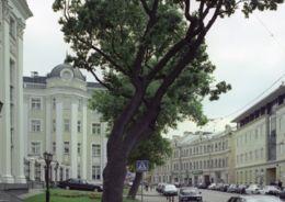 особняк Глебовой