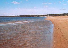 В Петербурге появился первый на Северо-Западе пляж для инвалидов