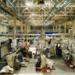 В России открыли завод по производству «жидкого дерева»