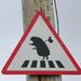 Минстрой разработал правила строительства миграционных переходов для животных через автомагистрали