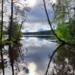 В Выборгском районе Ленобласти готовится к открытию экотропа