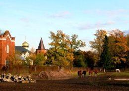 царское село