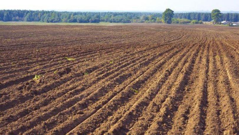 В СФ поддержали проект закона об обороте сельхозземель