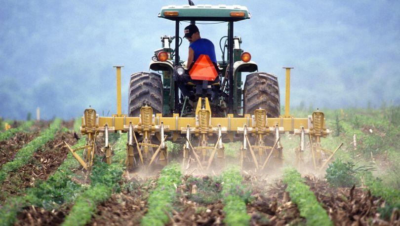 Более 2 тыс. фермеров в РФ получили субсидии на оформление земель