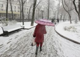 Синоптики рассказали, когда в Петербурге пойдет снег