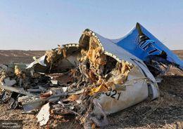 В Ленобласти могут возвести памятник жертвам авиакатастрофы над Синаем