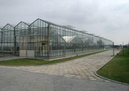 По требованию суда «Строй-Инвест» достроит тепличный комплекс в Пикалево
